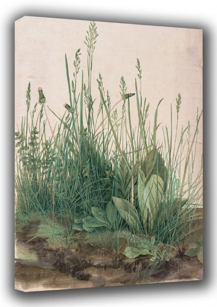 Durer, Albrecht: The Large Turf. (Realism) Botanical Fine Art Canvas. Sizes: A3/A2/A1 (001912)